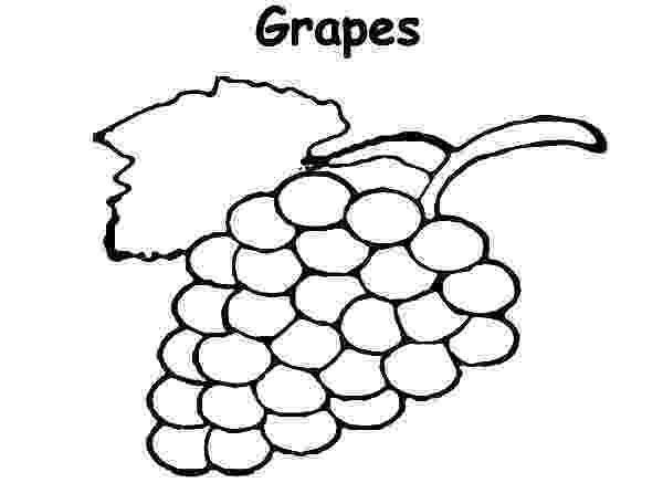 colouring pictures of grapes grapes coloring pages best coloring pages for kids colouring grapes pictures of