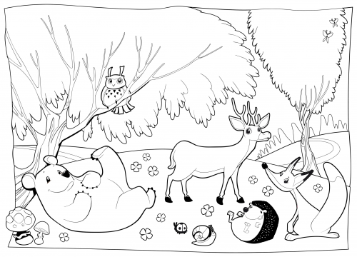 colouring sheets forest animals deciduous forest with animals coloring page forest sheets colouring animals