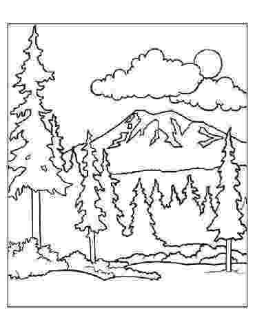 colouring sheets forest animals rainforest animals coloring pages entering the eerie animals forest sheets colouring
