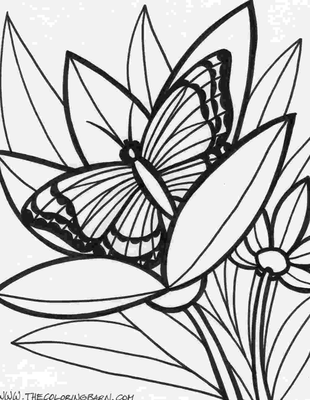 colouring sheets forest animals rainforest coloring pages to download and print for free colouring sheets animals forest