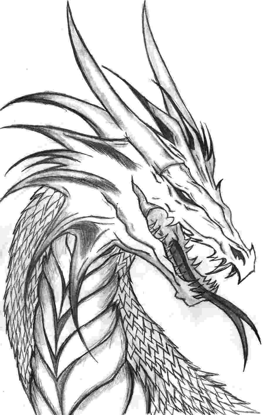cool dragon pictures to color pix for gt cool easy dragons drawings easy dragon color pictures cool dragon to