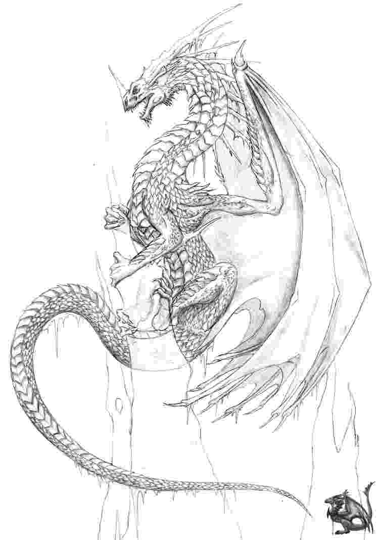 cool dragon pictures to color printable dragon coloring pages for kids cool2bkids cool dragon to color pictures