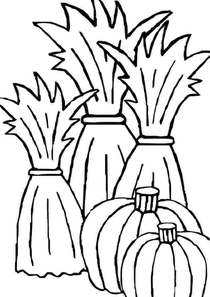 corn stalk coloring page awesome corn stalk coloring page 08 09 2015081307 fall page stalk corn coloring