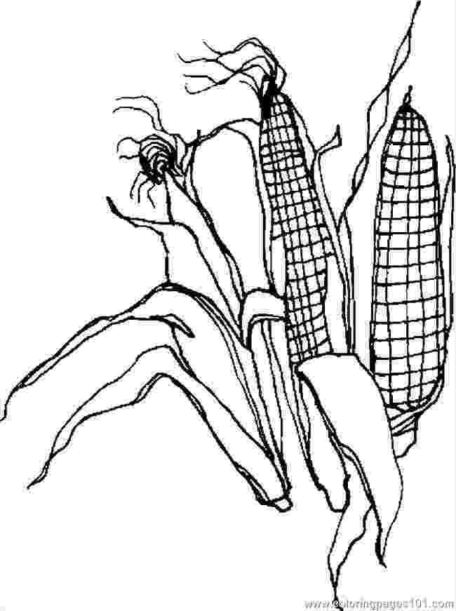 corn stalk coloring page corn stalk coloring pages coloring home coloring stalk page corn