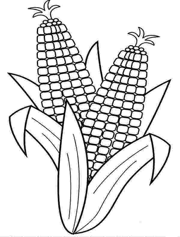 corn stalk coloring page corn stalks drawing at getdrawingscom free for personal coloring page corn stalk