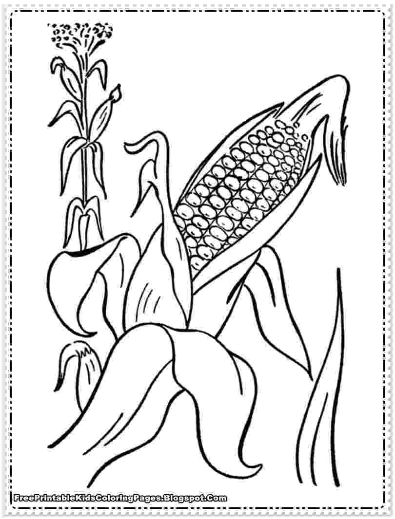 corn stalk coloring page corn stalks drawing at getdrawingscom free for personal corn page stalk coloring