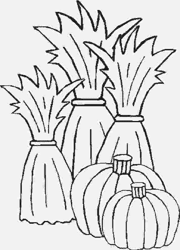 corn stalk coloring page pumpkin corn stalks hay mums clipart black and white page stalk coloring corn