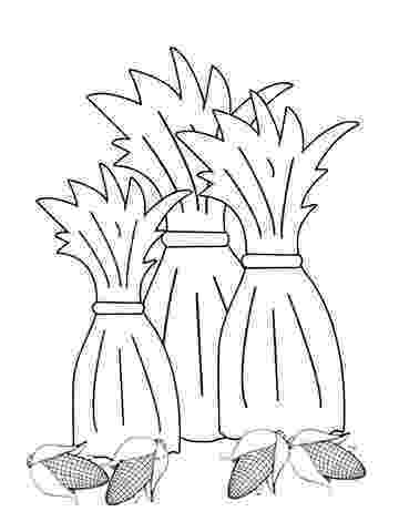 corn stalk coloring page use our free printable designs to keep kids of all ages coloring corn stalk page