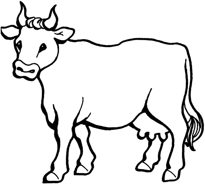 cow pictures to color cow 9 animals printable coloring pages pictures to color cow