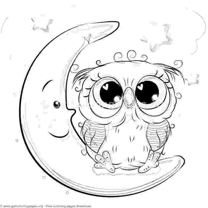 cute coloring pages of owls free cute baby owl coloring pages download free clip art pages owls coloring of cute