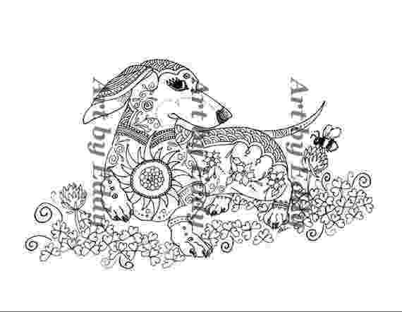 dachshund coloring pages dachshund coloring pages coloring pages dachshund