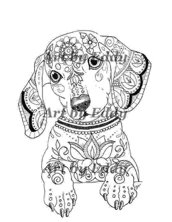 dachshund coloring pages dachshund coloring pages coloring pages to download and pages coloring dachshund