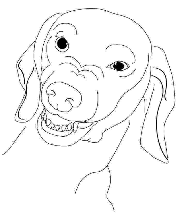 dachshund coloring pages dachshund coloring pages coloring pages to download and pages dachshund coloring