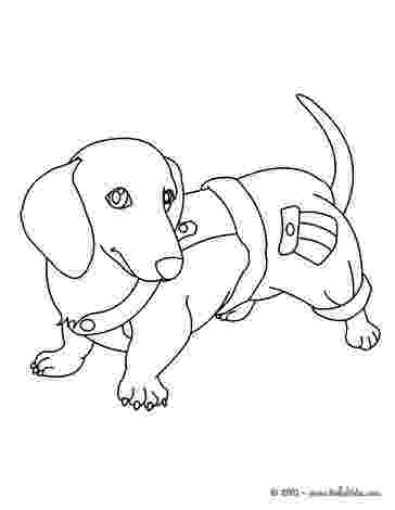 dachshund coloring pictures dachshund dog coloring page free printable coloring pages dachshund coloring pictures