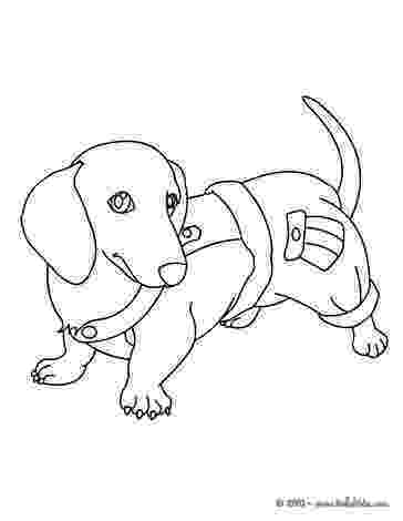 dachshund pictures to color 16 best dachshund coloring pages images on pinterest dachshund pictures color to