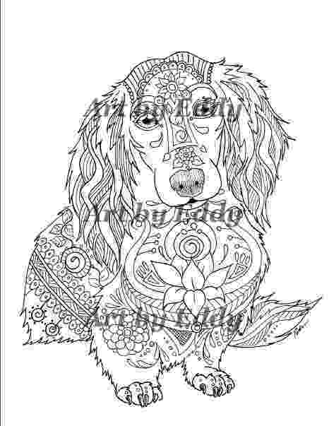 dachshund pictures to color art of dachshund single coloring page color to pictures dachshund