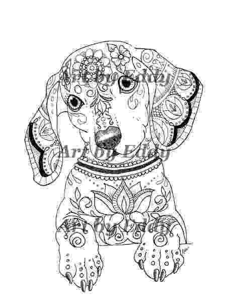 dachshund pictures to color art of dachshund single coloring page pictures to dachshund color