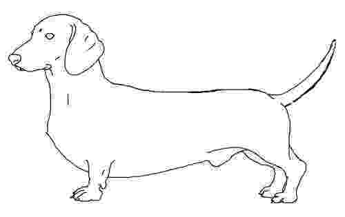 dachshund pictures to color dog color pages printable tweet coloring pages blog to dachshund color pictures