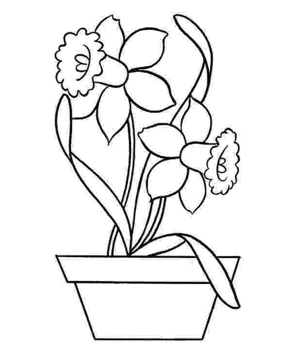 daffodil color fun learning printables for kids daffodil color