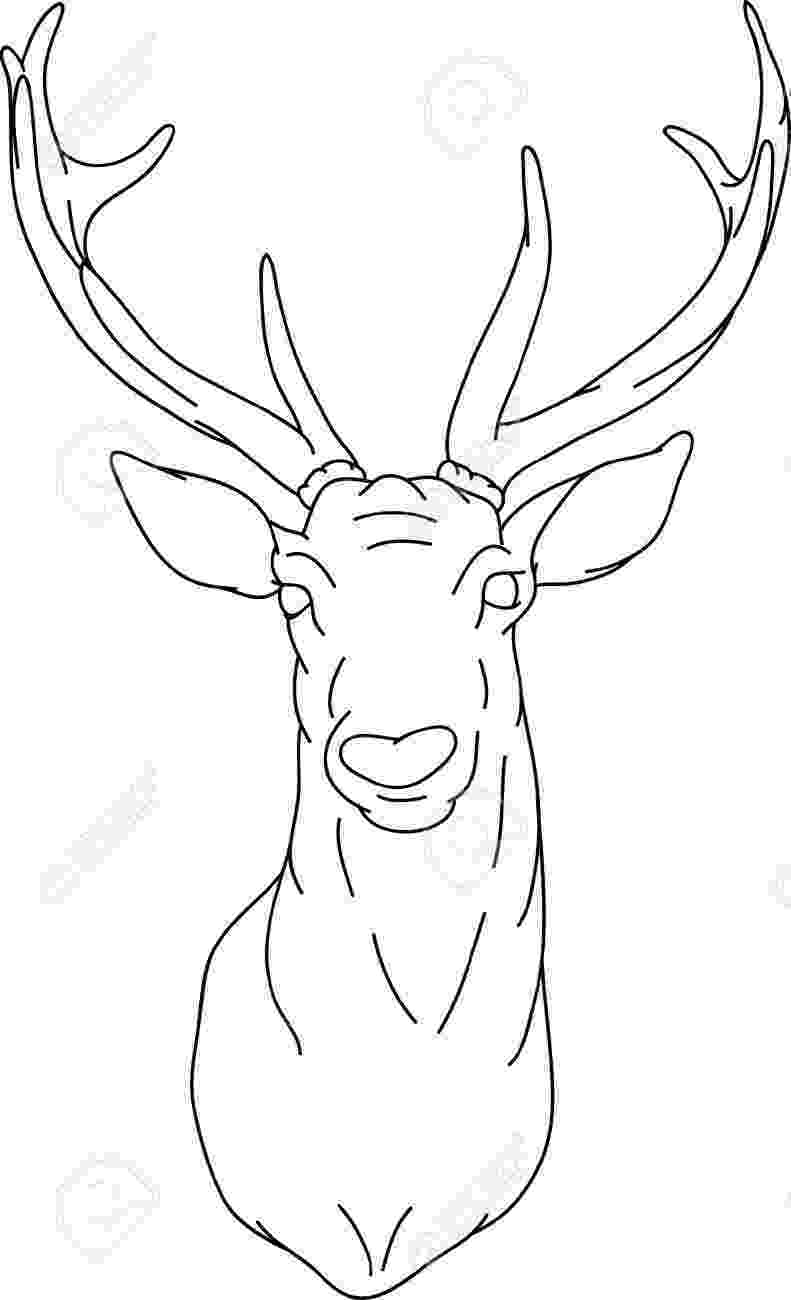deer head coloring pages 1000 images about wood burned signs on pinterest deer coloring deer head pages