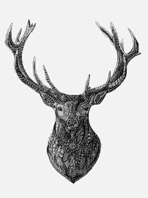 deer zentangle deer a deer and zentangle on pinterest deer zentangle