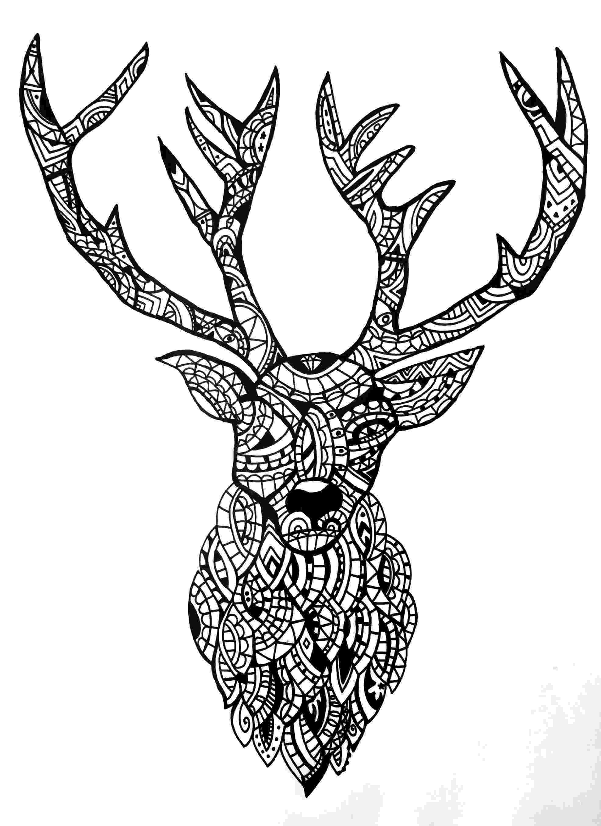 deer zentangle oh deer by cecilie wilsborg 2015 zentangle drawings deer zentangle