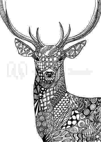deer zentangle quotdeer zentangle drawingquot stock photo and royalty free zentangle deer