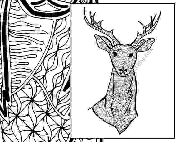 deer zentangle zentangle deer colouring page animal colouring zentangle deer zentangle