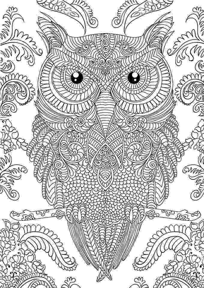 detailed color pages owl coloring pages for adults free detailed owl coloring color detailed pages