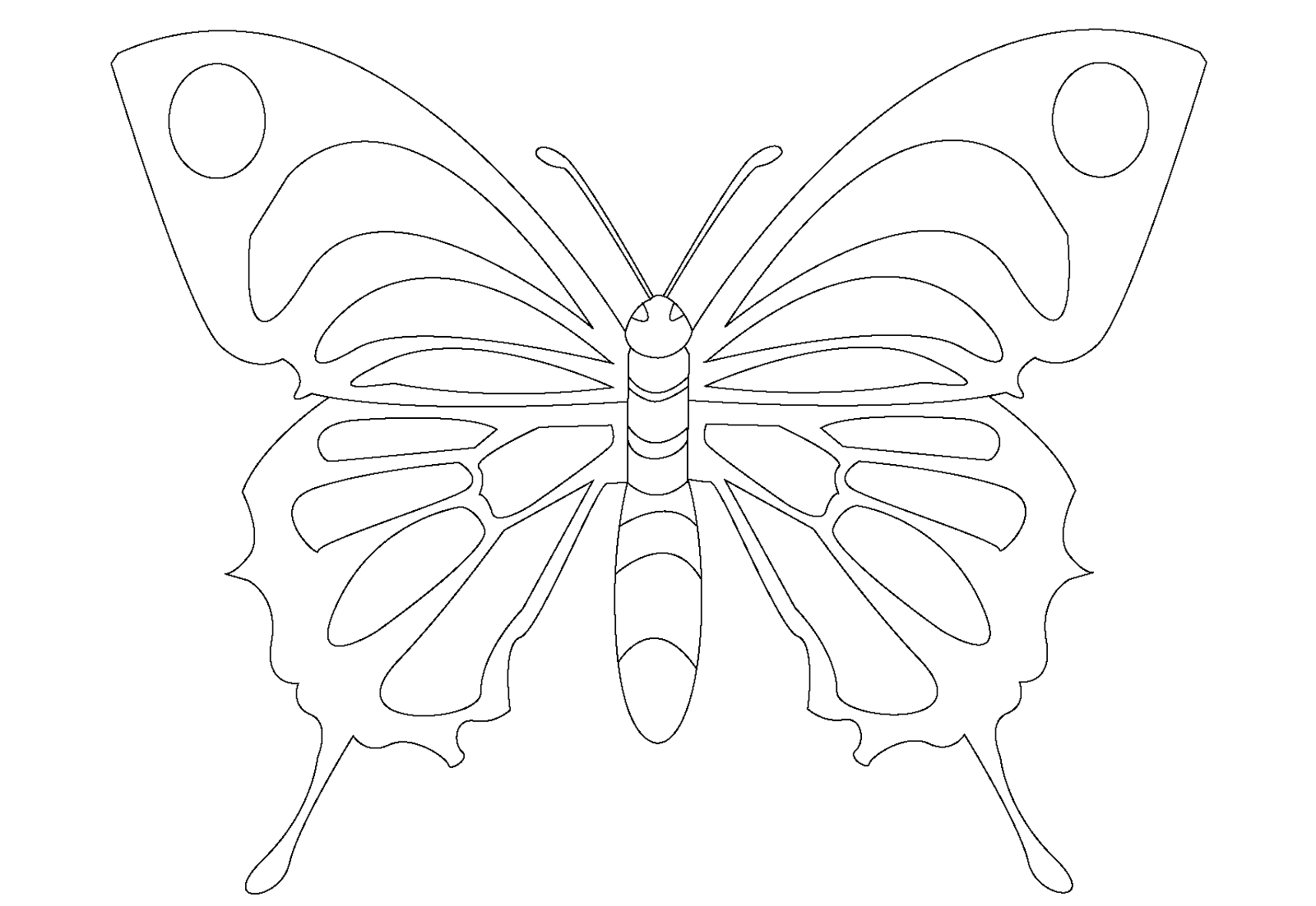 dibujos de para colorear de mariposas plantillas de mariposas para pintar en pared imagui mariposas de de colorear dibujos para