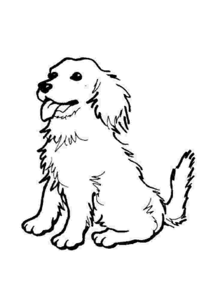 dog images to color colouring pages animals dogs colour fun to dog color images