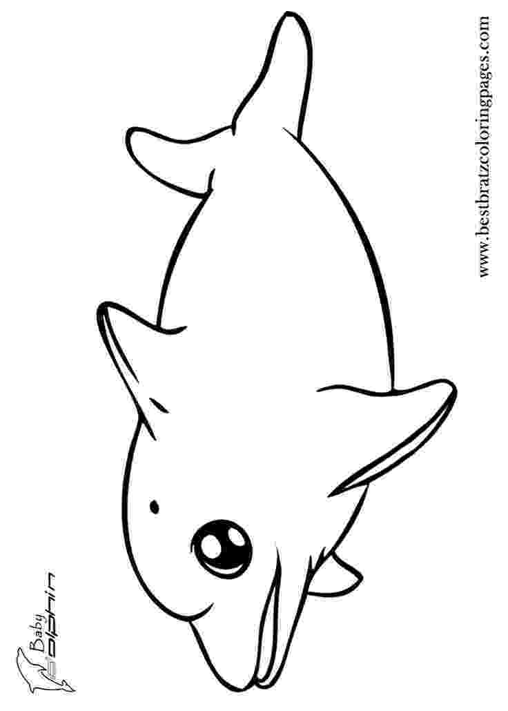 dolphin color pages dolphin coloring pages download and print for free dolphin pages color