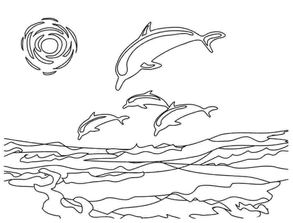 dolphin color pages free printable dolphin coloring pages for kids pages dolphin color