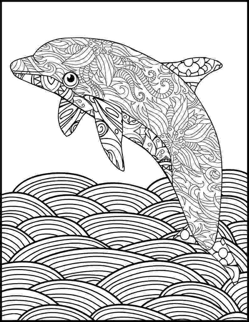 dolphin color pages printable coloring page adult coloring page dolphin etsy pages dolphin color