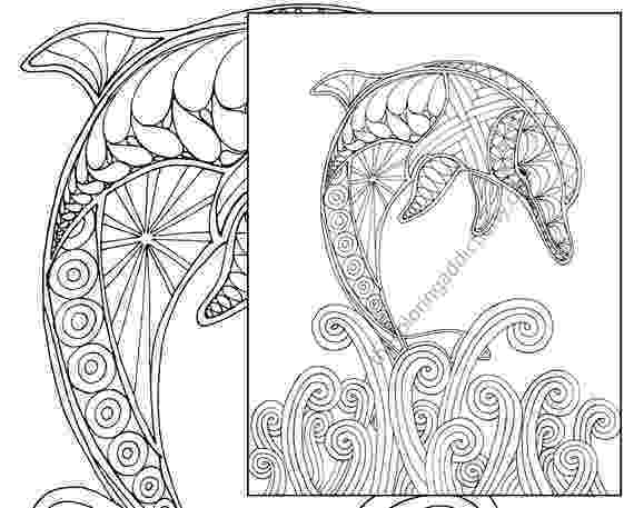 dolphin printables dolphin coloring pages coloring pages to print dolphin printables