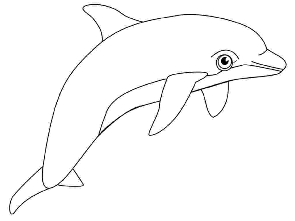 dolphin printables free dolphin clipart printable coloring pages outline printables dolphin
