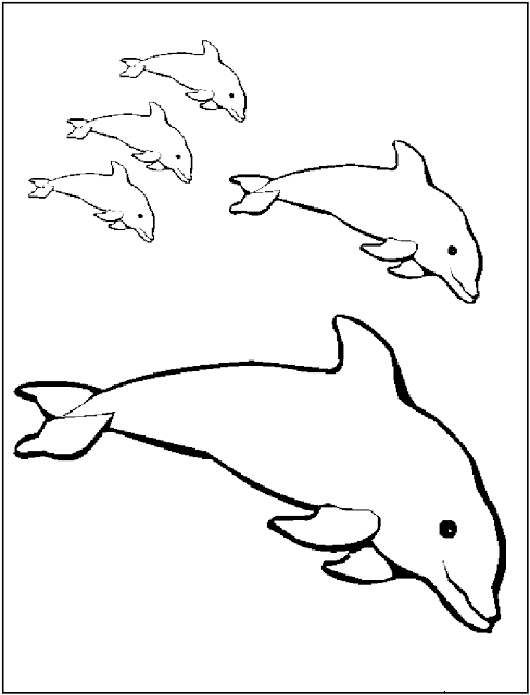 dolphin printables pin by muse printables on printable patterns at dolphin printables