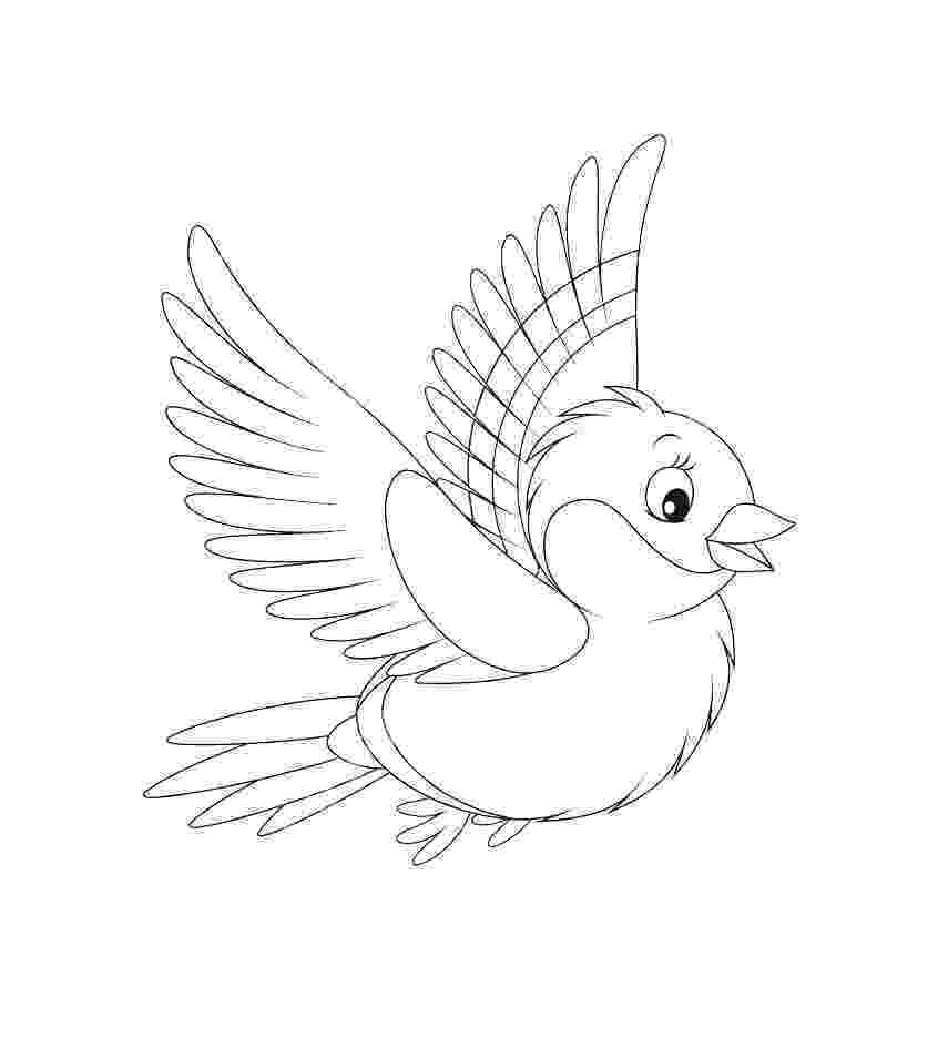 download kea coloring book for windows bullfinch coloring pages to download and print for free download coloring kea book for windows