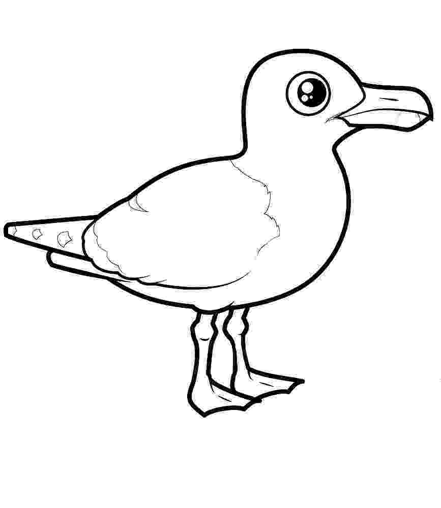 download kea coloring book for windows gull coloring pages to download and print for free download coloring windows book kea for
