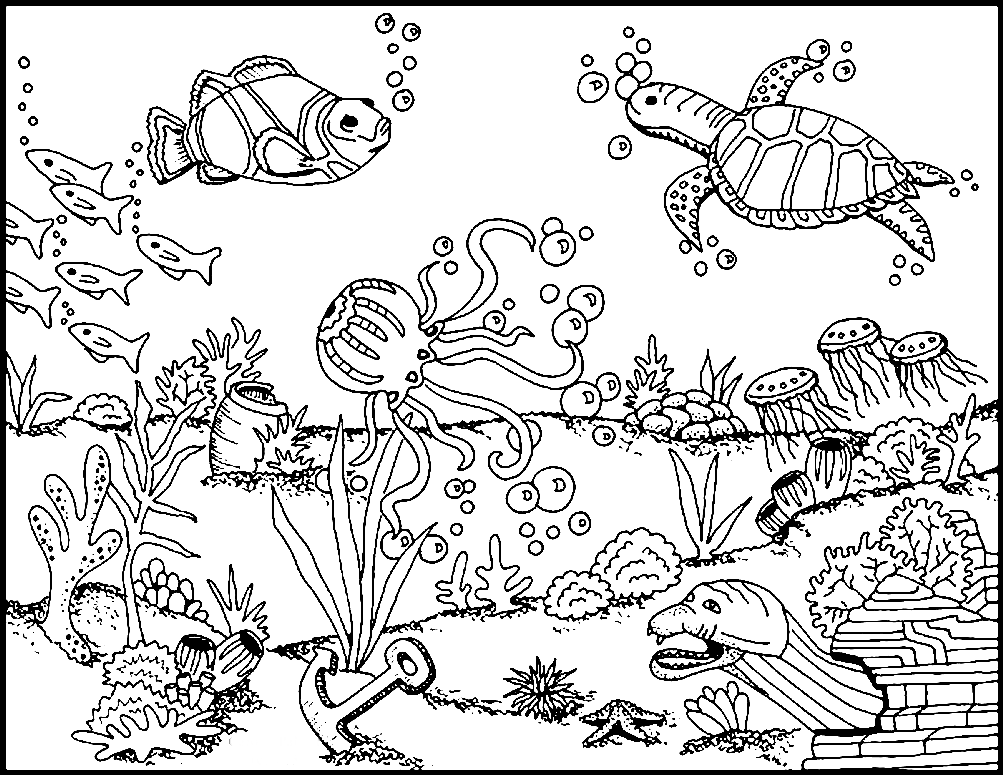 download kea coloring book for windows seabed coloring pages to download and print for free download kea book for coloring windows