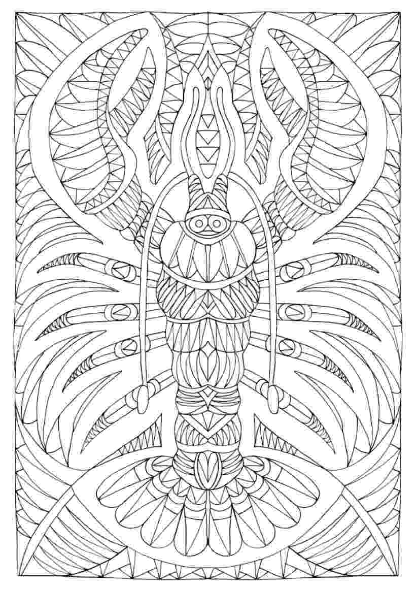 download kea coloring book for windows wizard coloring pages to download and print for free kea download book coloring windows for