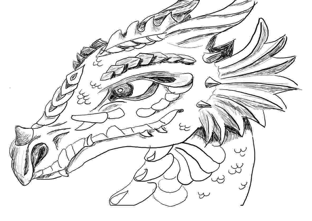 dragon coloring pictures dragon coloring pages for adults best coloring pages for coloring dragon pictures