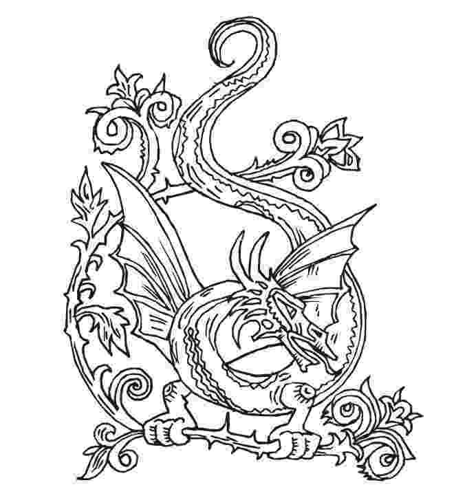 dragon coloring sheet cute dragon and chick coloring page free printable coloring dragon sheet