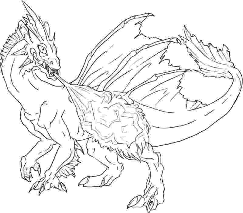 dragon coloring sheet free printable coloring pages for adults advanced dragons coloring sheet dragon