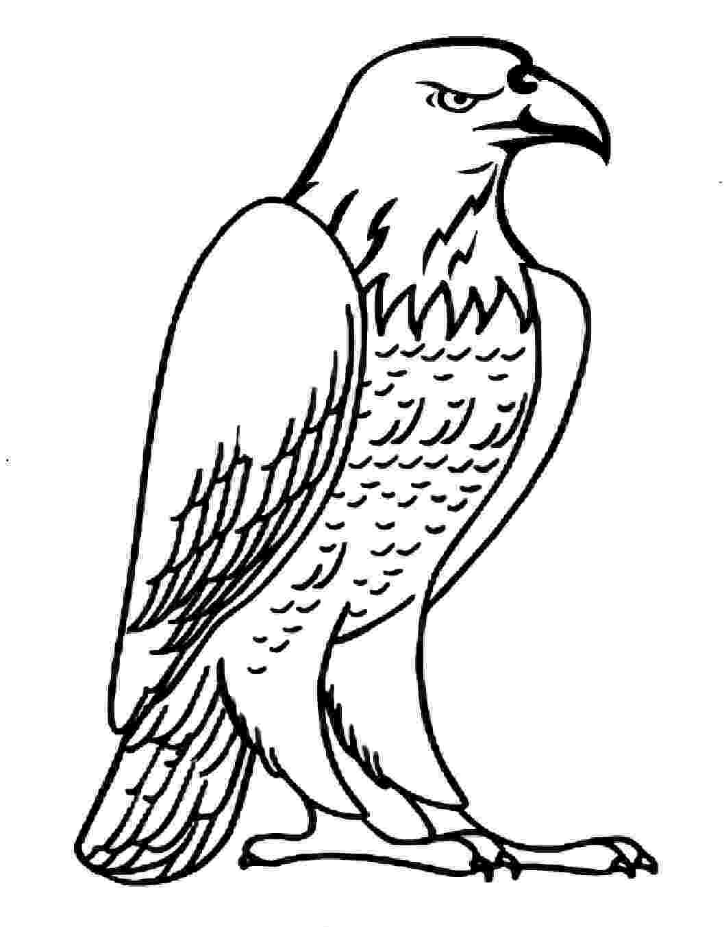 eagle colouring pictures free eagle coloring pages colouring eagle pictures 1 1