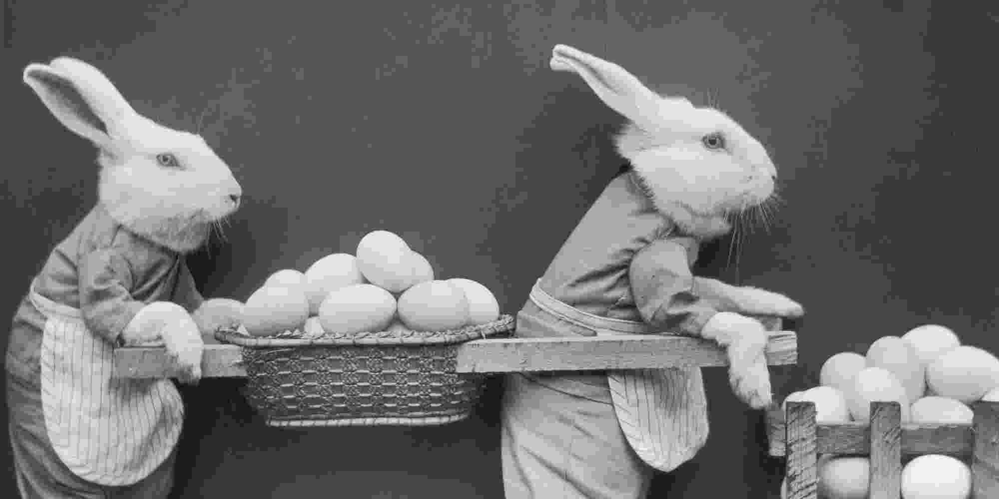 easter bunny images retro easter bunny images the graphics fairy images bunny easter