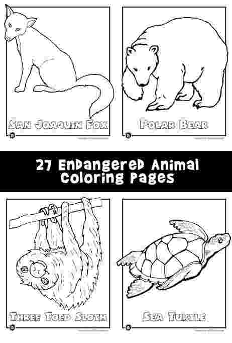 endangered species coloring pages endangered animals coloring page endangered coloring pages species