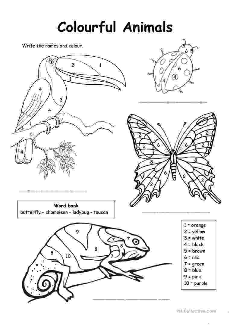 esl colouring pages animals english worksheets jungle animals coloring sheet pages esl colouring animals