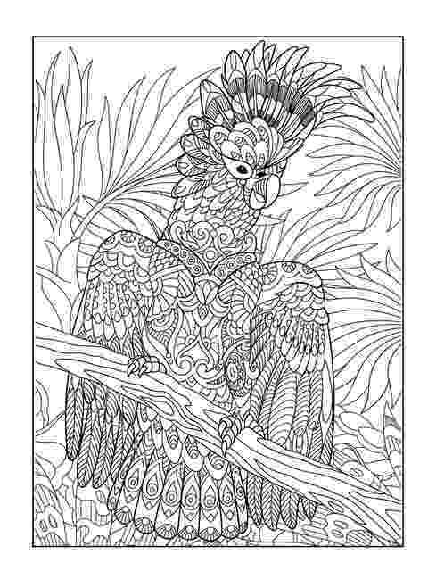 esl colouring pages animals exotic animals adult coloring book designs myria pages esl animals colouring