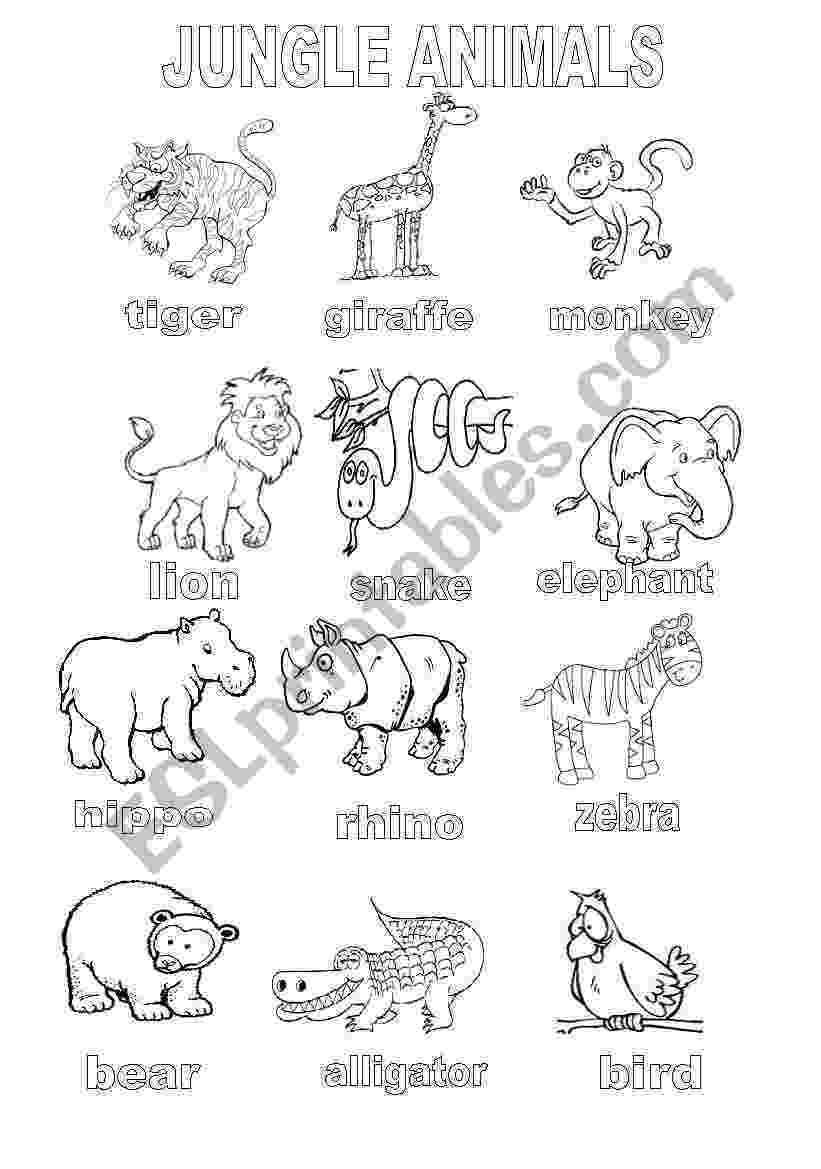 esl colouring pages animals wild animal39s book worksheet free esl printable animals colouring esl pages